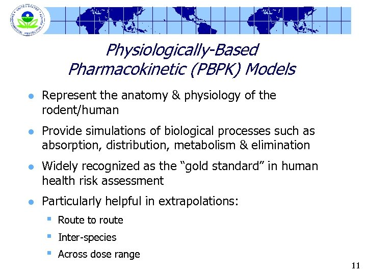 Physiologically-Based Pharmacokinetic (PBPK) Models l Represent the anatomy & physiology of the rodent/human l