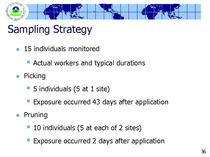 Sampling Strategy l 15 individuals monitored § Actual workers and typical durations l Picking