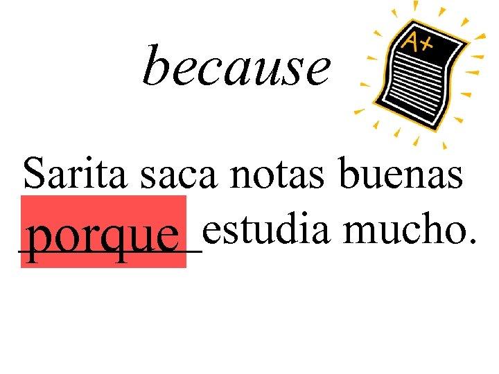 because Sarita saca notas buenas ____estudia mucho. porque
