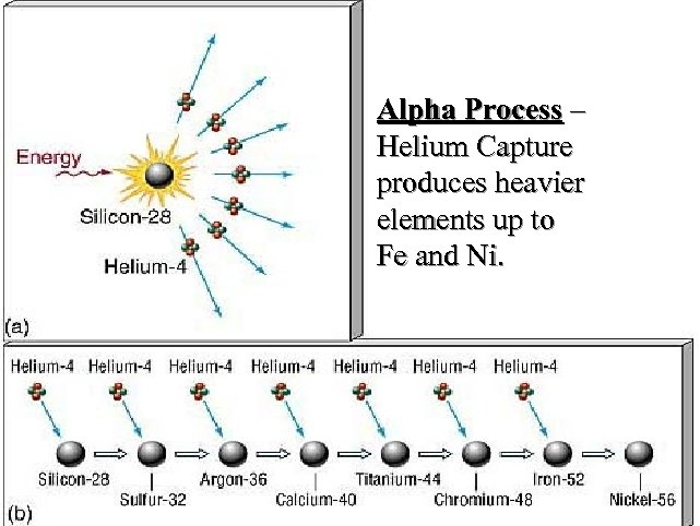 Alpha Process – Helium Capture produces heavier elements up to Fe and Ni.