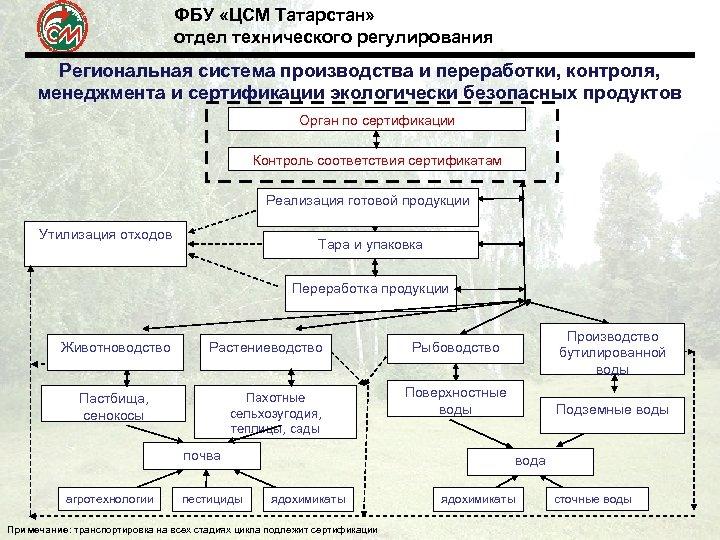ФБУ «ЦСМ Татарстан» отдел технического регулирования Региональная система производства и переработки, контроля, менеджмента и