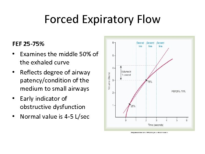 Forced Expiratory Flow FEF 25 -75% • Examines the middle 50% of the exhaled