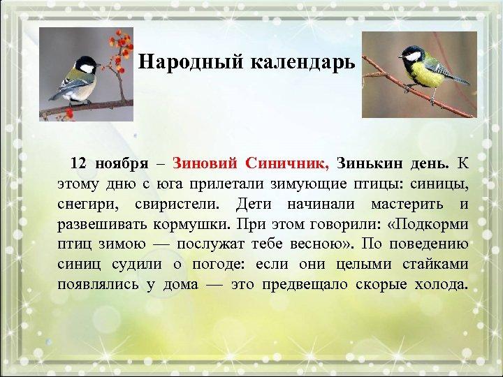 Народный календарь 12 ноября – Зиновий Синичник, Зинькин день. К этому дню с юга