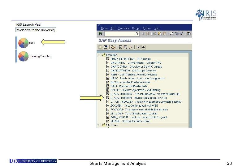Grants Management Analysis 38