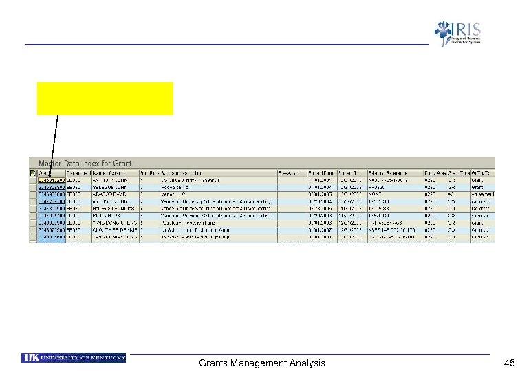 Grants Management Analysis 45