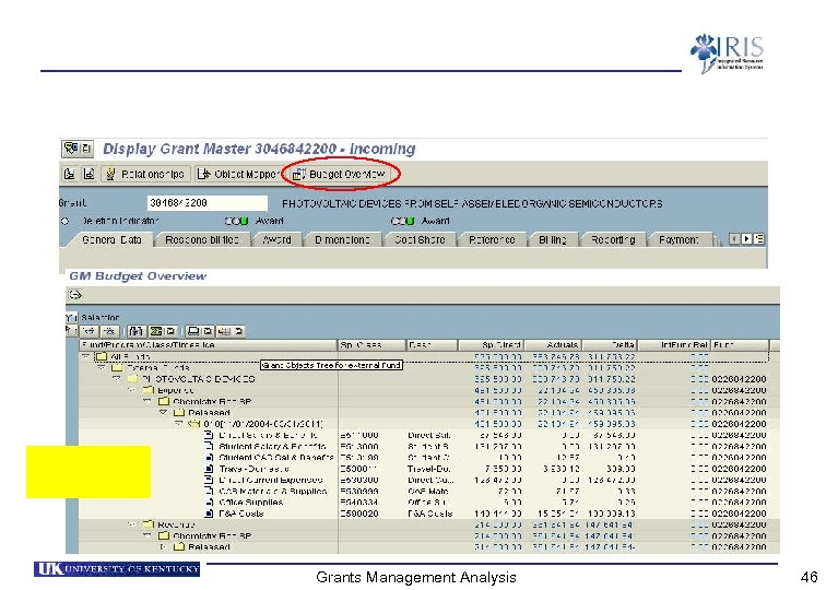 Grants Management Analysis 46