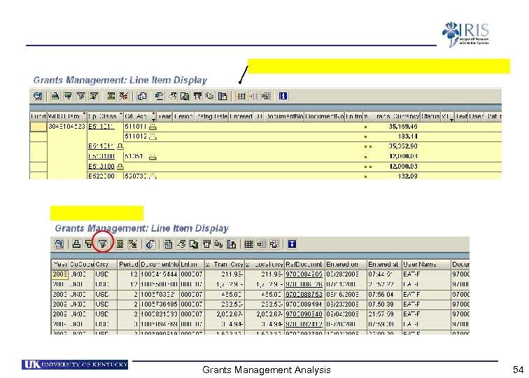 Grants Management Analysis 54