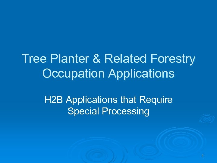 Tree Planter & Related Forestry Occupation Applications H 2 B Applications that Require Special