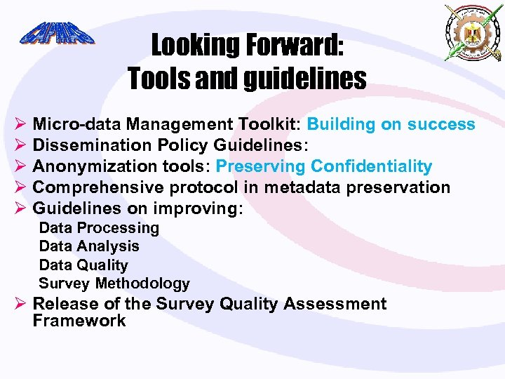 Looking Forward: Tools and guidelines Ø Micro-data Management Toolkit: Building on success Ø Dissemination