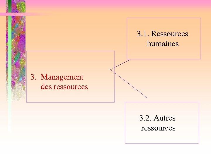 3. 1. Ressources humaines 3. Management des ressources 3. 2. Autres ressources