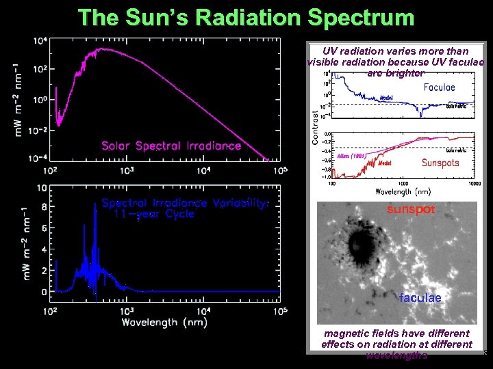 The Sun's Radiation Spectrum UV radiation varies more than visible radiation because UV faculae
