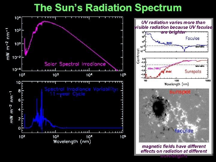 The Sun's Radiation Spectrum UV radiation varies more than visible radiation because UV faculae