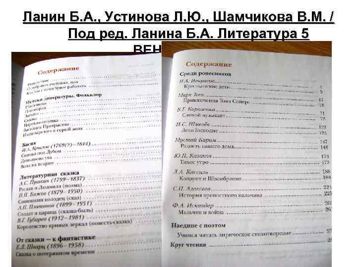 Ланин Б. А. , Устинова Л. Ю. , Шамчикова В. М. / Под ред.