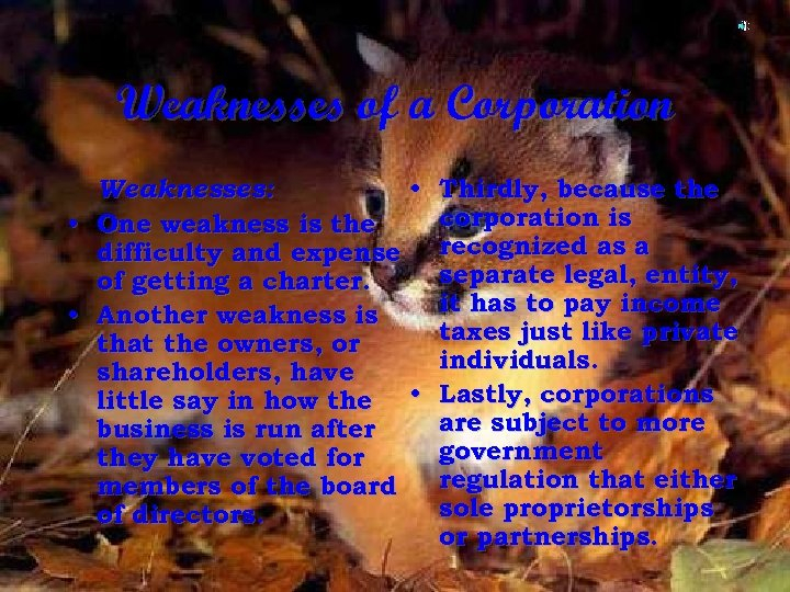 Weaknesses of a Corporation • • Weaknesses: • Thirdly, because the corporation is One