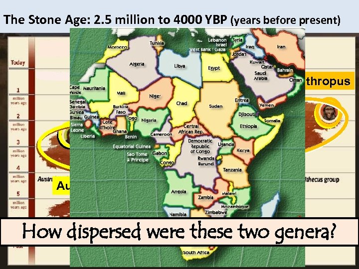 The Stone Age: 2. 5 million to 4000 YBP (years before present) homo Paranthropus