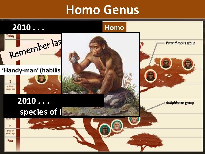Homo Genus 2010. . . eek? st w homo Homo er la emb Rem