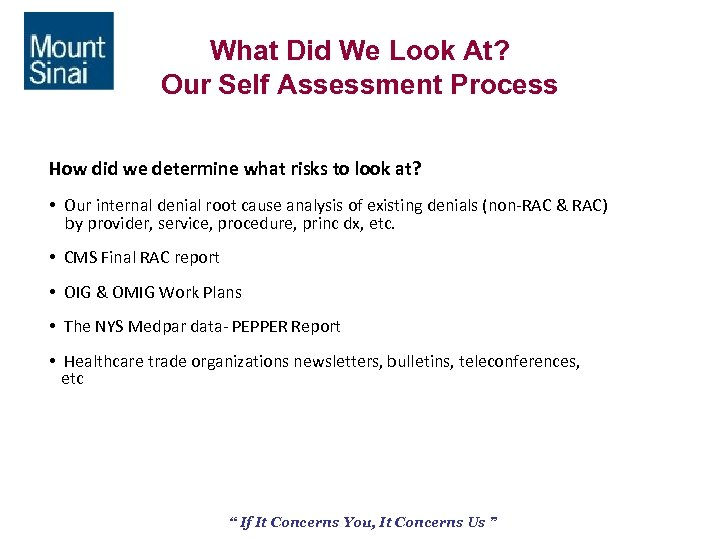 What Did We Look At? Our Self Assessment Process How did we determine what