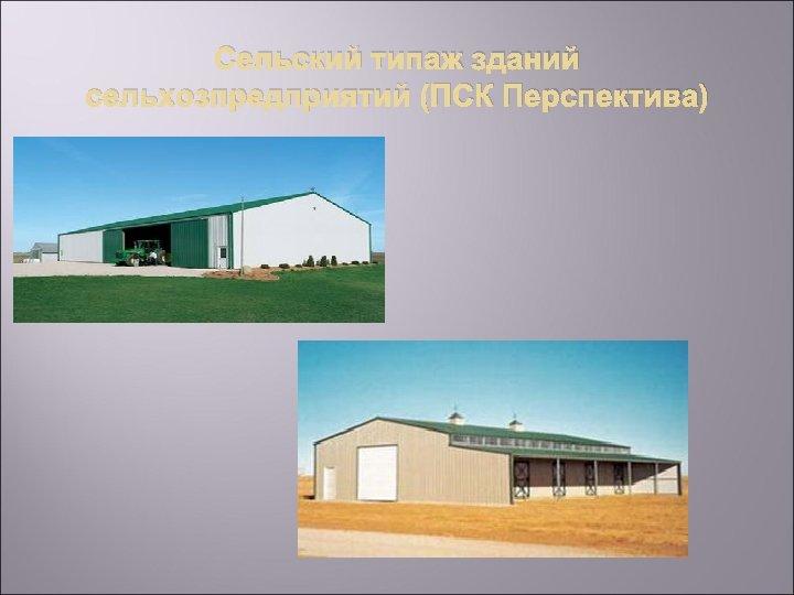 Сельский типаж зданий сельхозпредприятий (ПСК Перспектива)