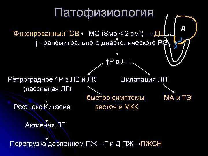 """Патофизиология """"Фиксированный"""" СВ МС (Sмо < 2 см²) → ДШ ↑ трансмитрального диастолического PG"""