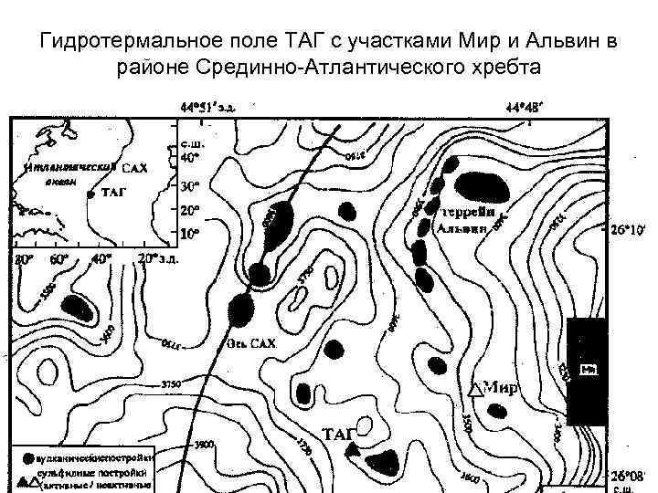 Гидротермальное поле ТАГ с участками Мир и Альвин в районе Срединно-Атлантического хребта