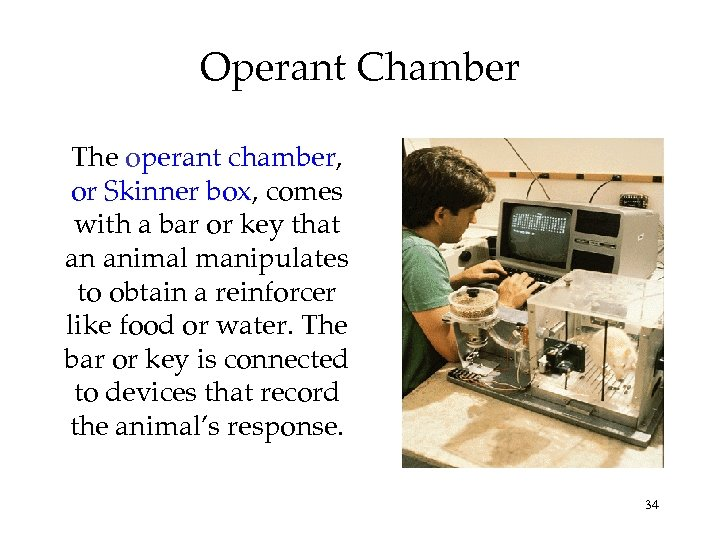 Operant Chamber The operant chamber, or Skinner box, comes with a bar or key