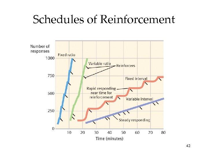 Schedules of Reinforcement 42