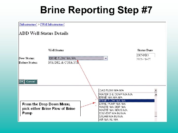Brine Reporting Step #7 From the Drop Down Menu, pick either Brine Flow of