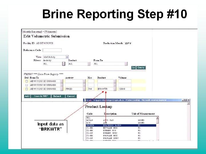 "Brine Reporting Step #10 Input data as ""BRKWTR"""