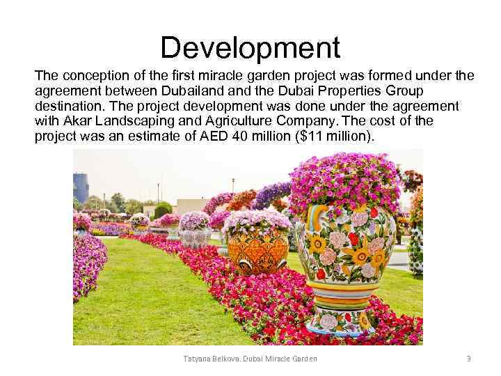 Development The conception of the first miracle garden project was formed under the agreement
