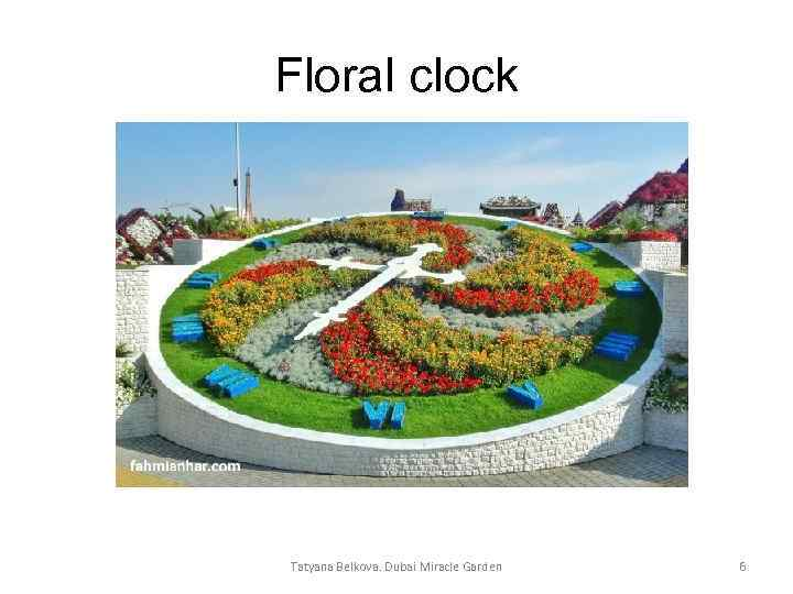 Floral clock Tatyana Belkova. Dubai Miracle Garden 6