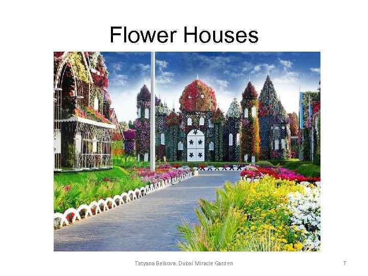 Flower Houses Tatyana Belkova. Dubai Miracle Garden 7