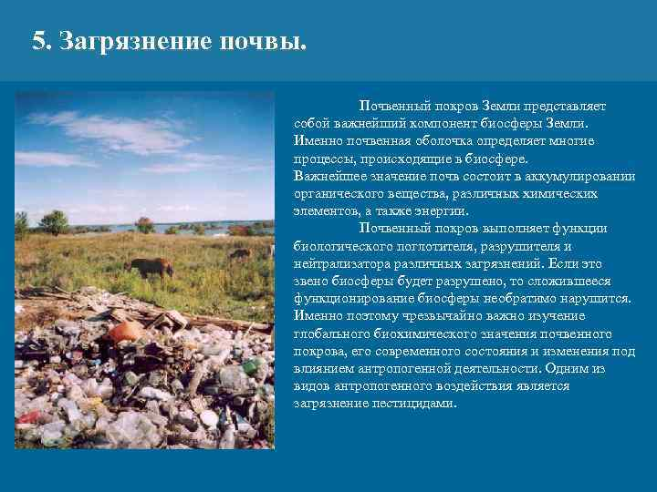5. Загрязнение почвы. Почвенный покров Земли представляет собой важнейший компонент биосферы Земли. Именно почвенная