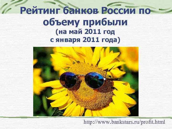 Рейтинг банков России по объему прибыли (на май 2011 год с января 2011 года)