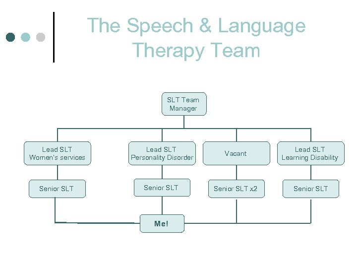 The Speech & Language Therapy Team SLT Team Manager Lead SLT Women's services Lead