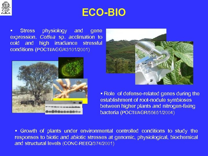 ECO-BIO § Stress physiology and gene expression. Coffea sp. acclimation to cold and high