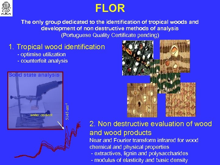 FLOR The only group dedicated to the identification of tropical woods and development of