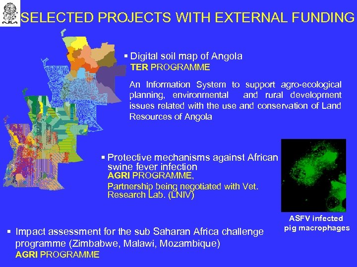 SELECTED PROJECTS WITH EXTERNAL FUNDING § Digital soil map of Angola TER PROGRAMME An