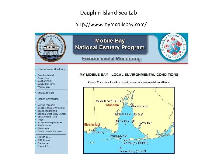 Dauphin Island Sea Lab http: //www. mymobilebay. com/