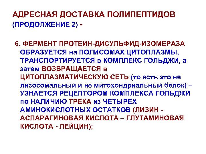 АДРЕСНАЯ ДОСТАВКА ПОЛИПЕПТИДОВ (ПРОДОЛЖЕНИЕ 2) 6. ФЕРМЕНТ ПРОТЕИН-ДИСУЛЬФИД-ИЗОМЕРАЗА ОБРАЗУЕТСЯ на ПОЛИСОМАХ ЦИТОПЛАЗМЫ, ТРАНСПОРТИРУЕТСЯ в