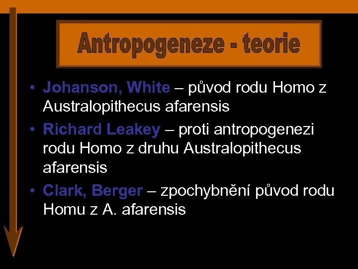 • Johanson, White – původ rodu Homo z Australopithecus afarensis • Richard Leakey