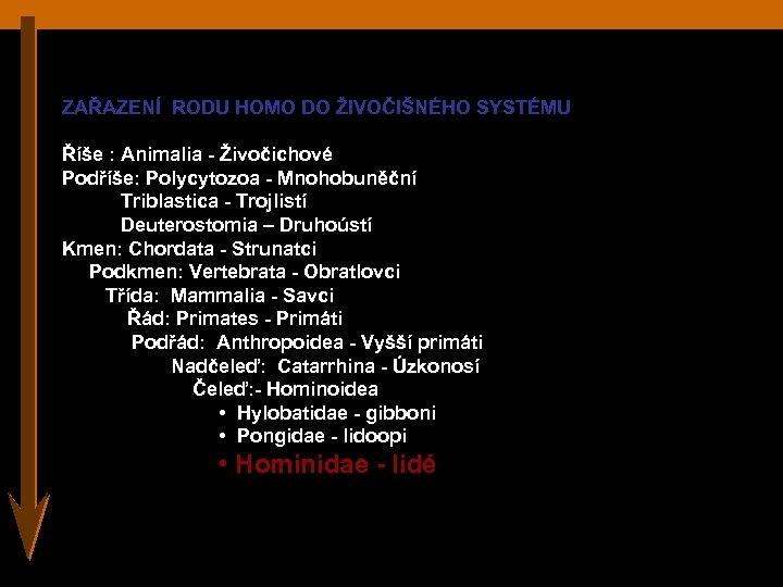 ZAŘAZENÍ RODU HOMO DO ŽIVOČIŠNÉHO SYSTÉMU Říše : Animalia - Živočichové Podříše: Polycytozoa -