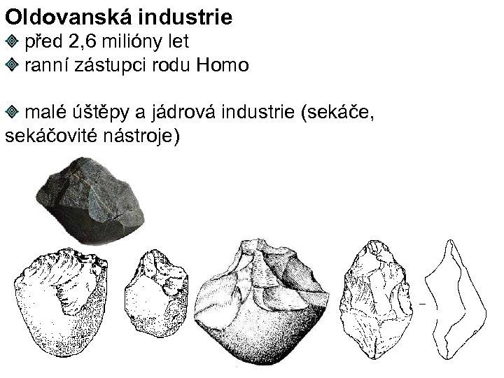 Oldovanská industrie před 2, 6 milióny let ranní zástupci rodu Homo malé úštěpy a