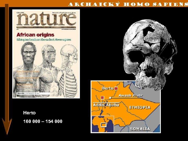 Archaický Homo sapiens Herto 160 000 – 154 000