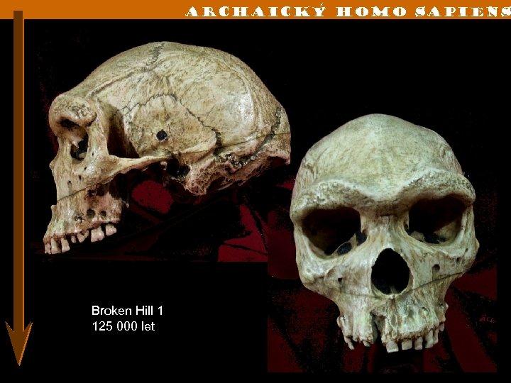 Archaický Homo sapiens Broken Hill 1 125 000 let