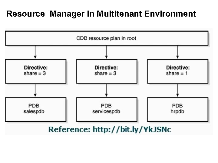Resource Manager in Multitenant Environment