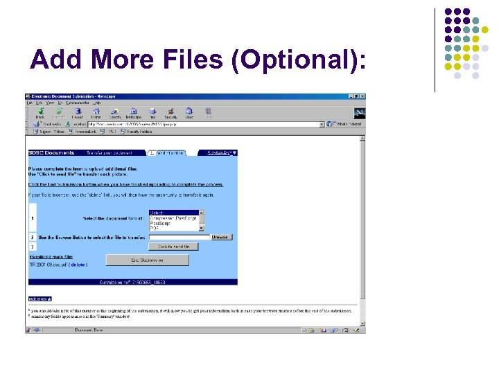 Add More Files (Optional):