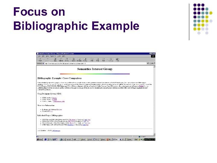 Focus on Bibliographic Example