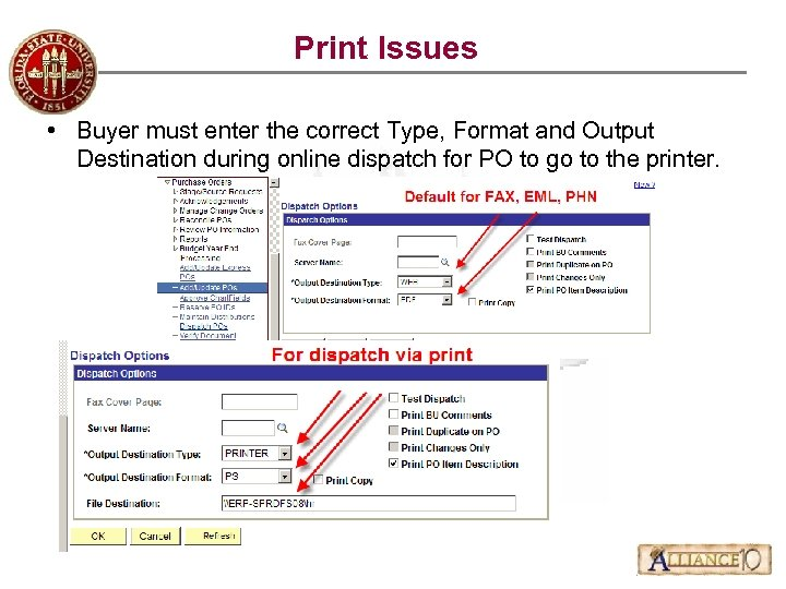 Print Issues • Buyer must enter the correct Type, Format and Output Destination during