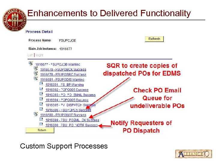 Enhancements to Delivered Functionality Custom Support Processes