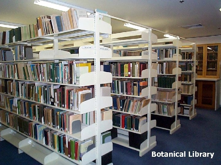 Botanical Library
